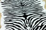 mмеховые шкурки зебра